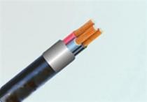 Cáp điện CVV/DSTA-3x50 - 0.6/1kV