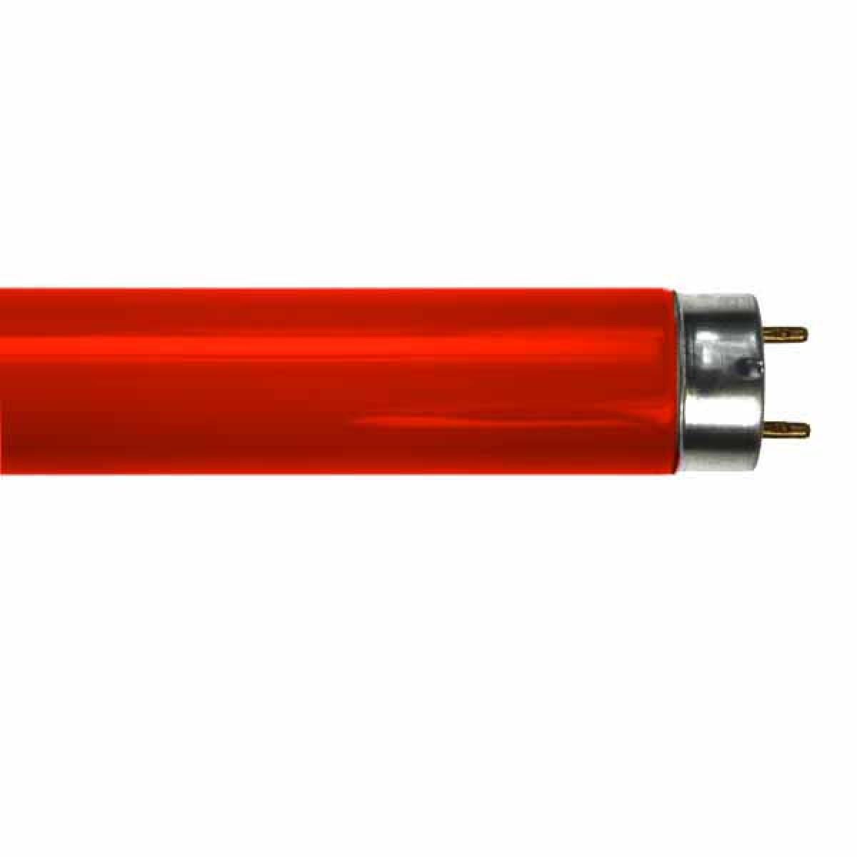 Bóng đèn Huỳnh quang T8 Màu Đỏ