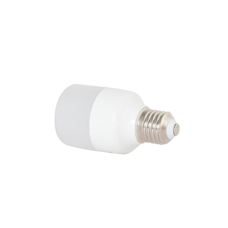 Bóng đèn led buld trụ LED TR70N2/14W