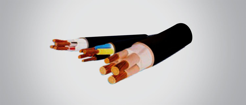 Cáp điện CVV/DSTA-3x50+1x35 - 0.6/1kV