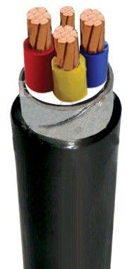 Cáp điện CVV/DSTA-4xXX( Cách điện PVC, Vỏ PVC) CVV/DSTA-4xXX