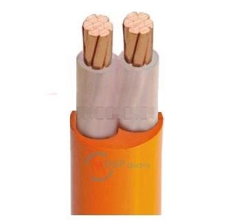 Cáp điện chống cháy CXV/FR-2x1( Cách điện XLPE, Vỏ FR-PVC) CXV/FR-2x1
