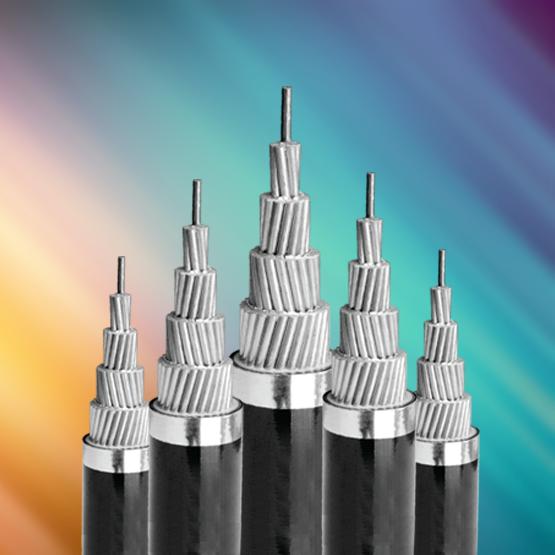Cáp điện lõi thép,cách điện PVC 0.6/1kv