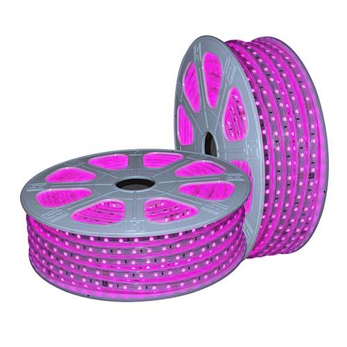 LED dây ánh sáng hồng 6W/m (LDH01)